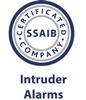 SSAIB intruder